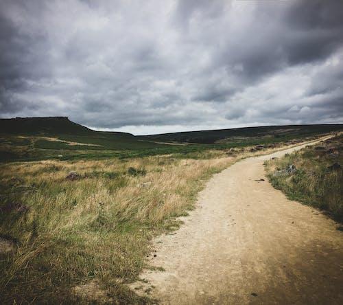 Immagine gratuita di campi, inghilterra, natura, paesaggio