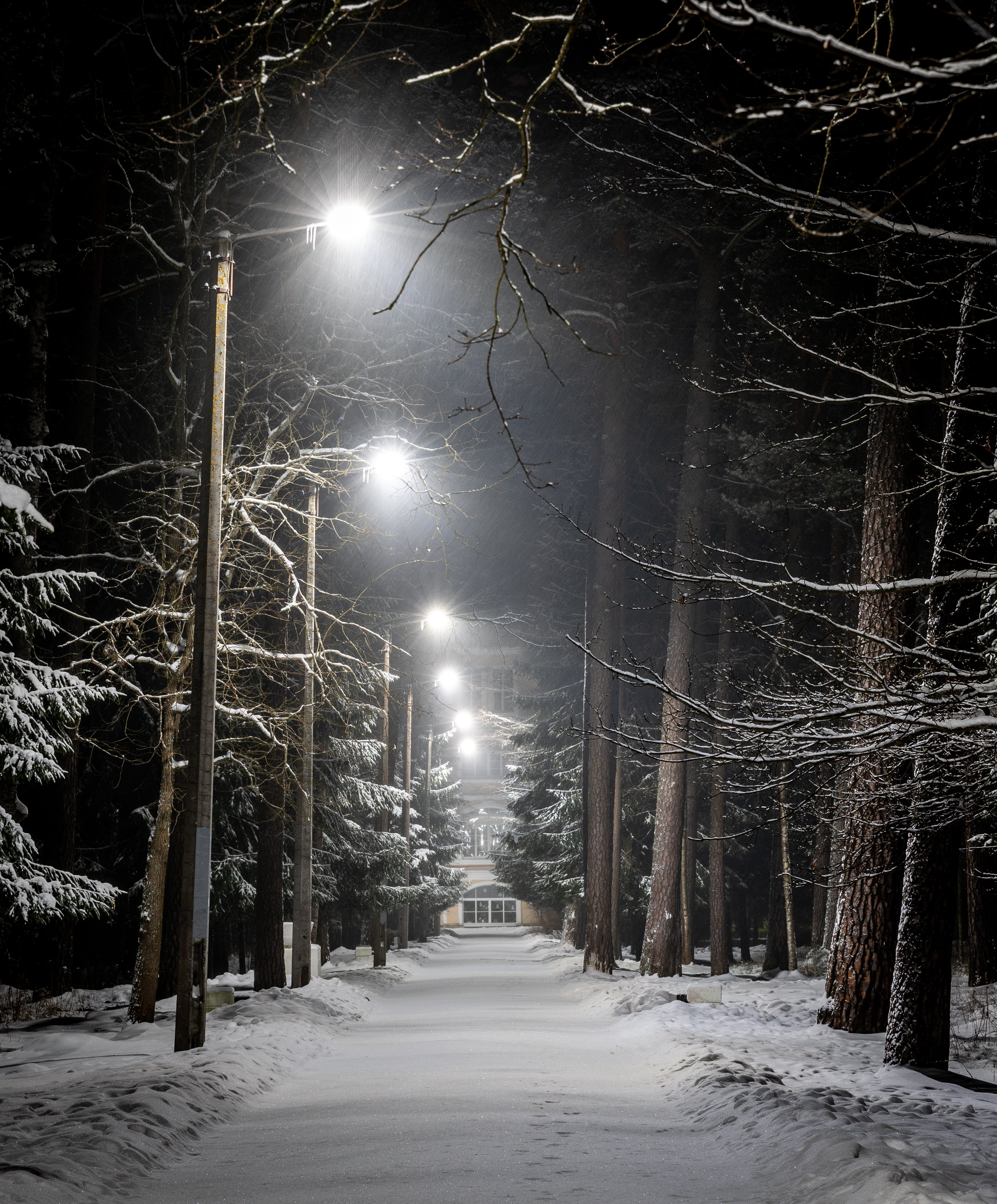 Photo of Pavement With Street Lights During Winter