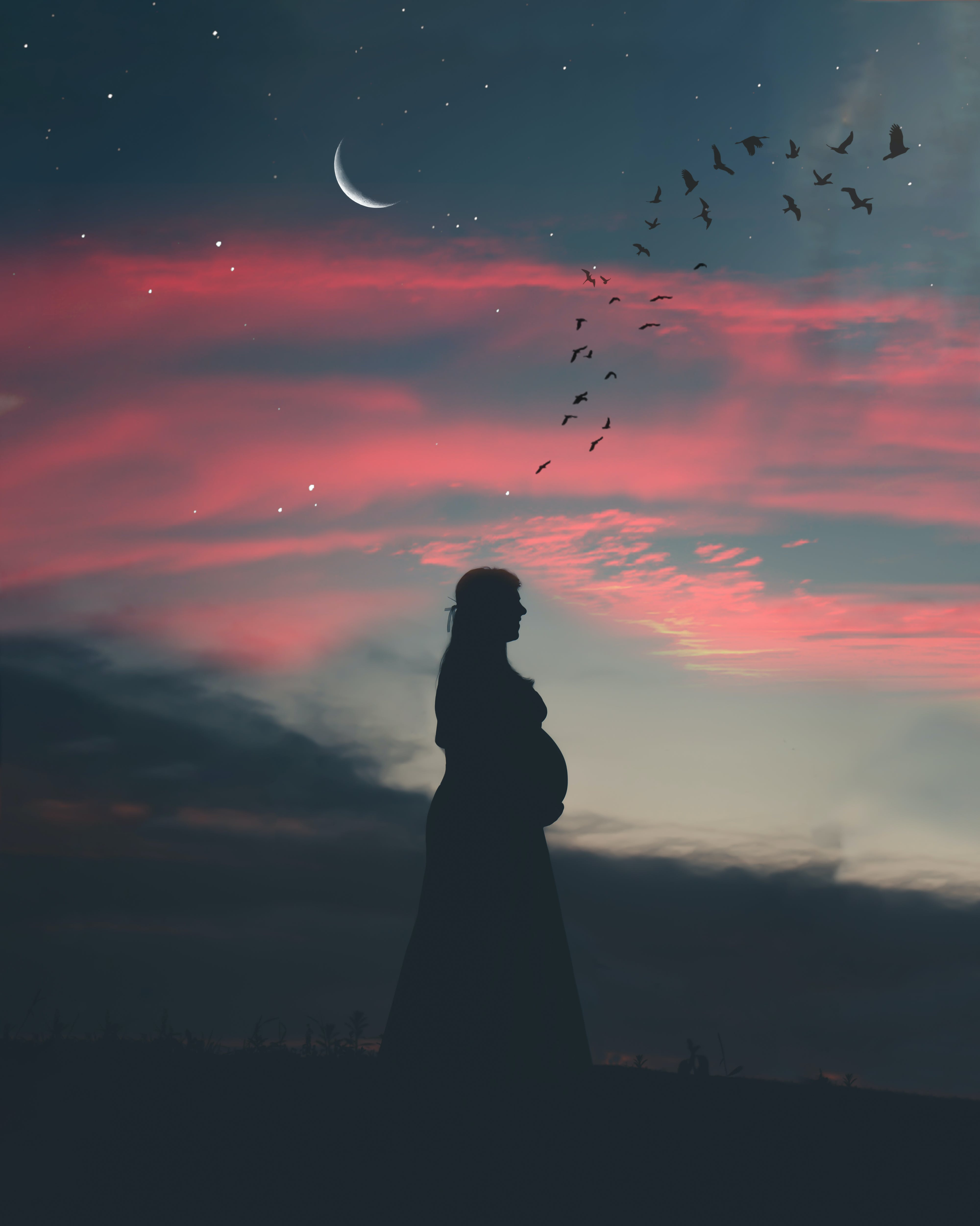 Pregnant Woman Under Cloudy Sky in Silhouette Photography