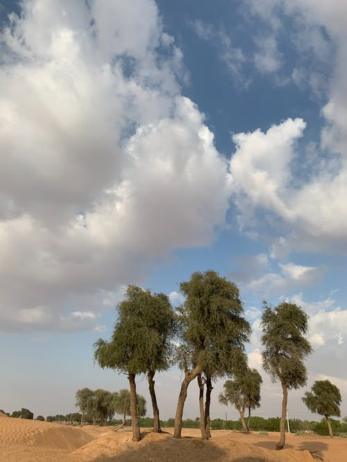 Free stock photo of cloud, day, desert