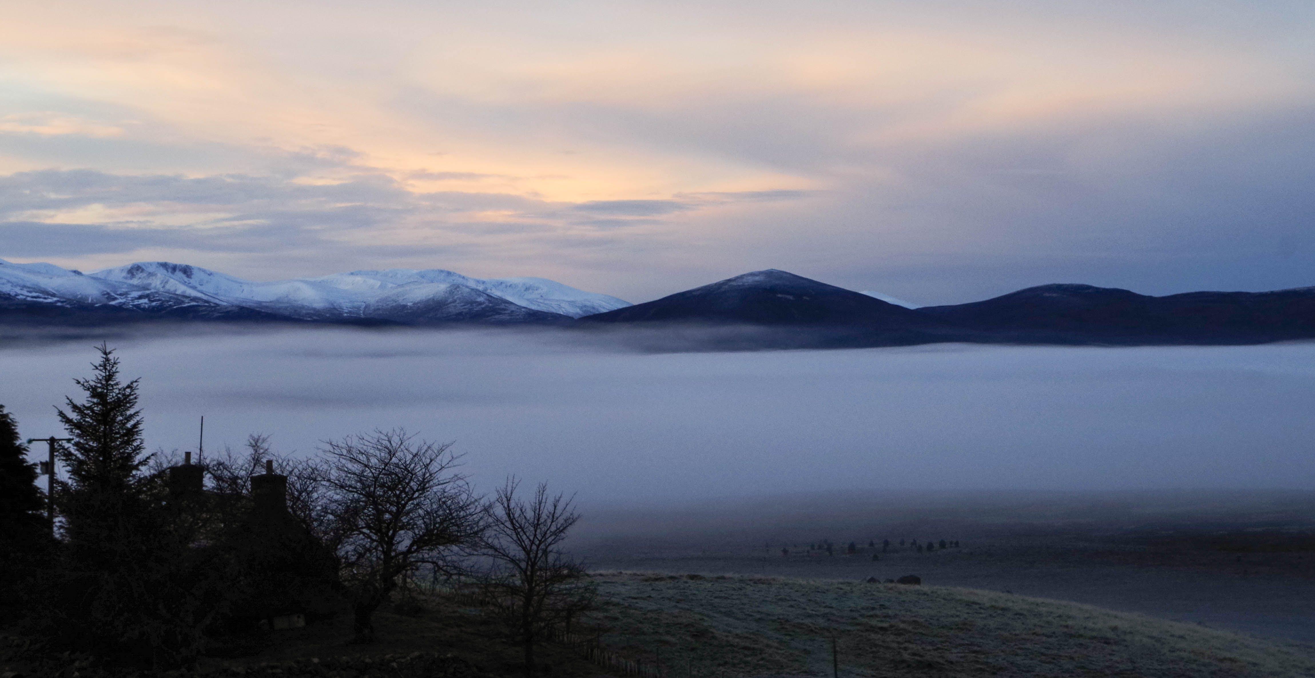 Darmowe zdjęcie z galerii z chmury, drzewa, dzień, fotografia przyrodnicza