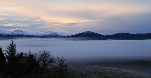 Fotobanka sbezplatnými fotkami na tému chladný, deň, denné svetlo, fotografia prírody