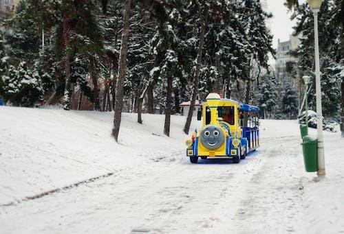 Základová fotografie zdarma na téma dopravní systém, letovisko, park, rýma