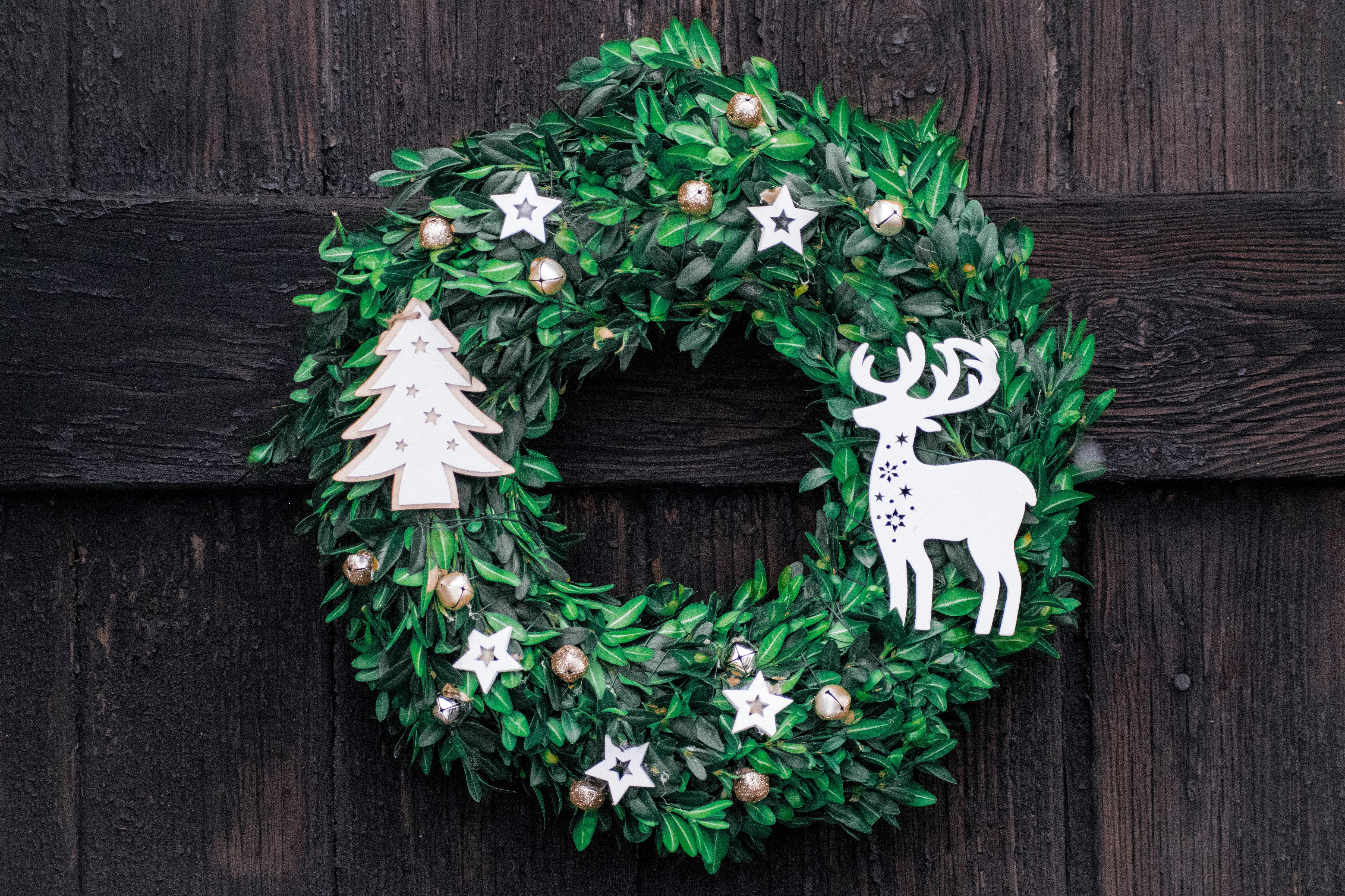 Free stock photo of christmas, green, wreath