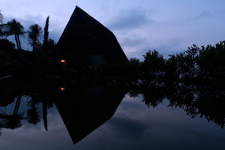 Free stock photo of bali, nature, reflection