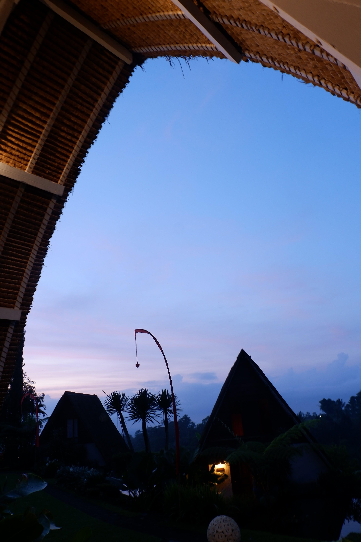 Free stock photo of bali, nature, sunrise