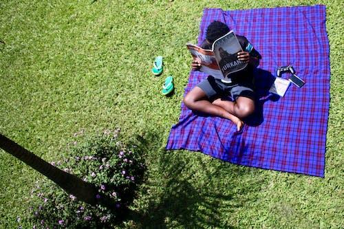 讀, 非洲男孩 的 免费素材照片