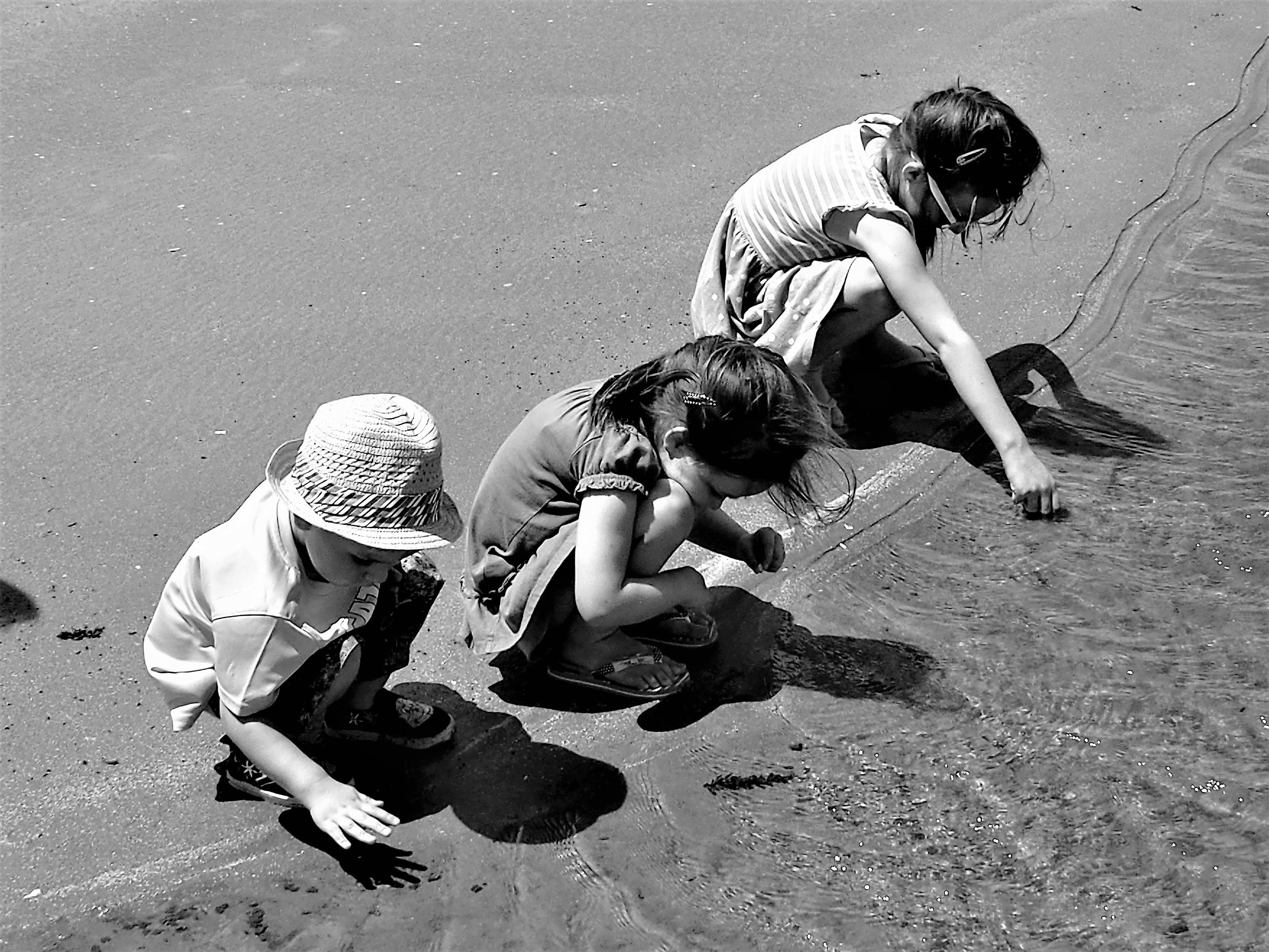 Free stock photo of beach, children, fun