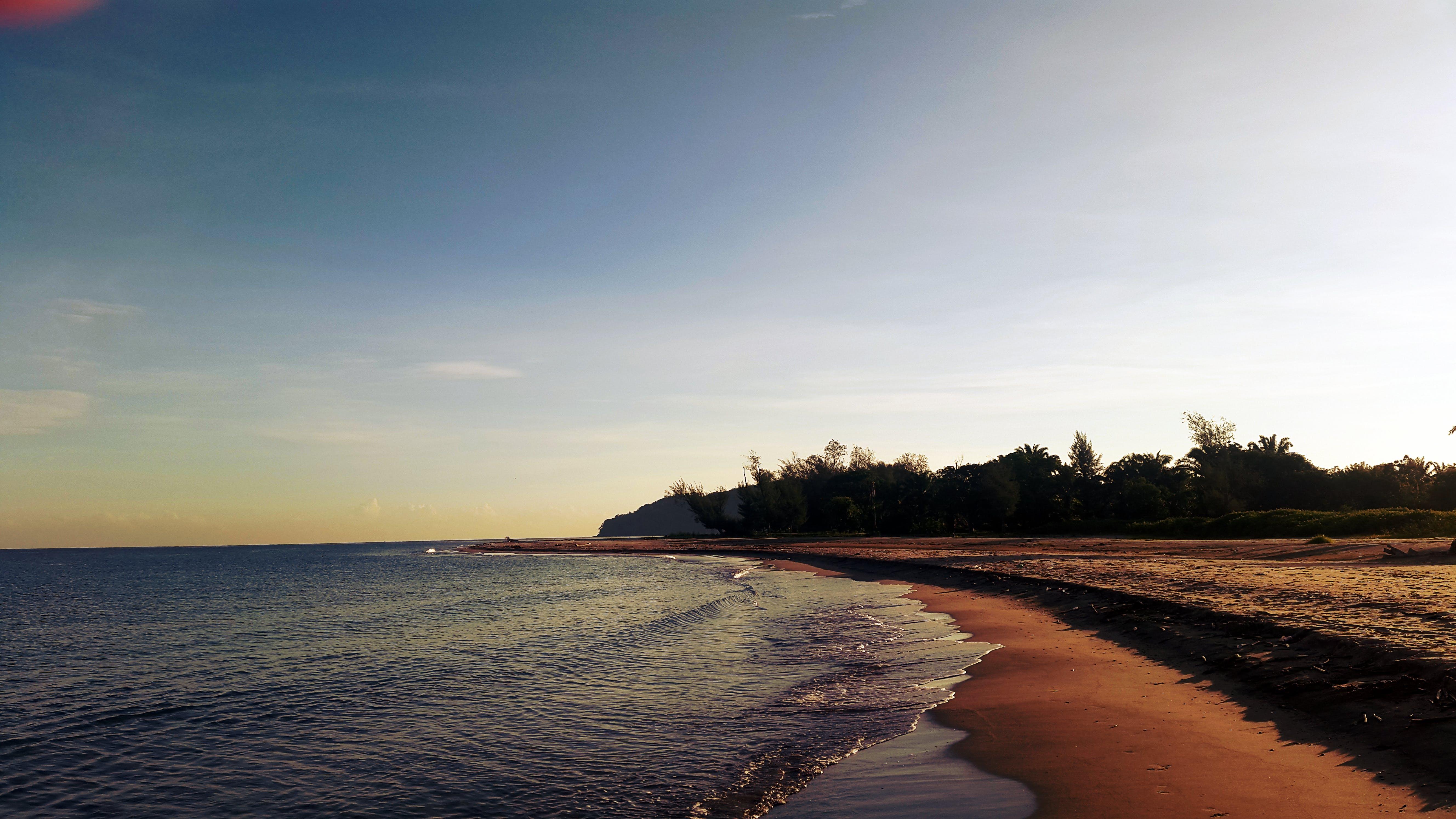 Free stock photo of beach, dawn, honduras, sand