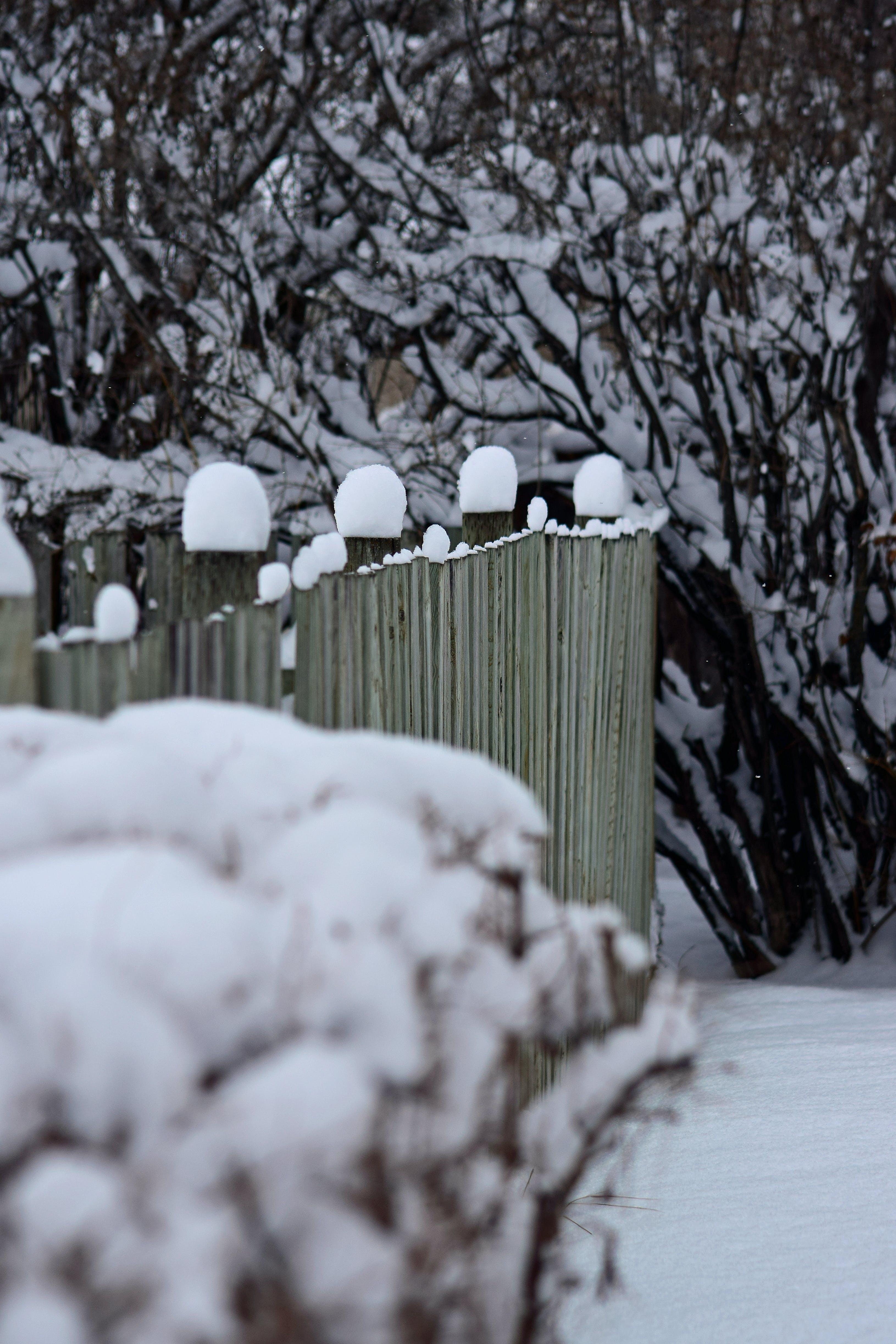 holzzaun, schnee, winter