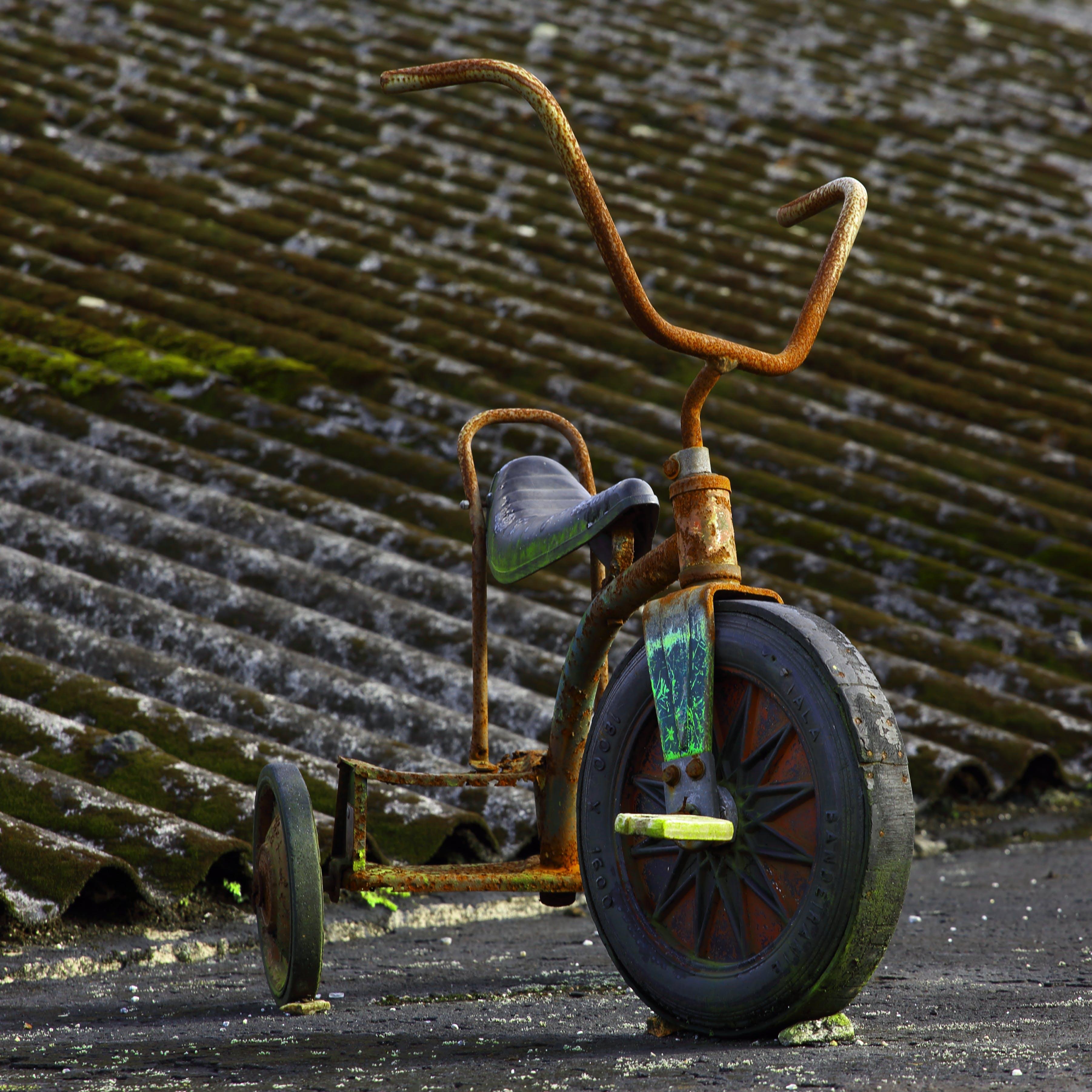Fotos de stock gratuitas de triciclo ovelho