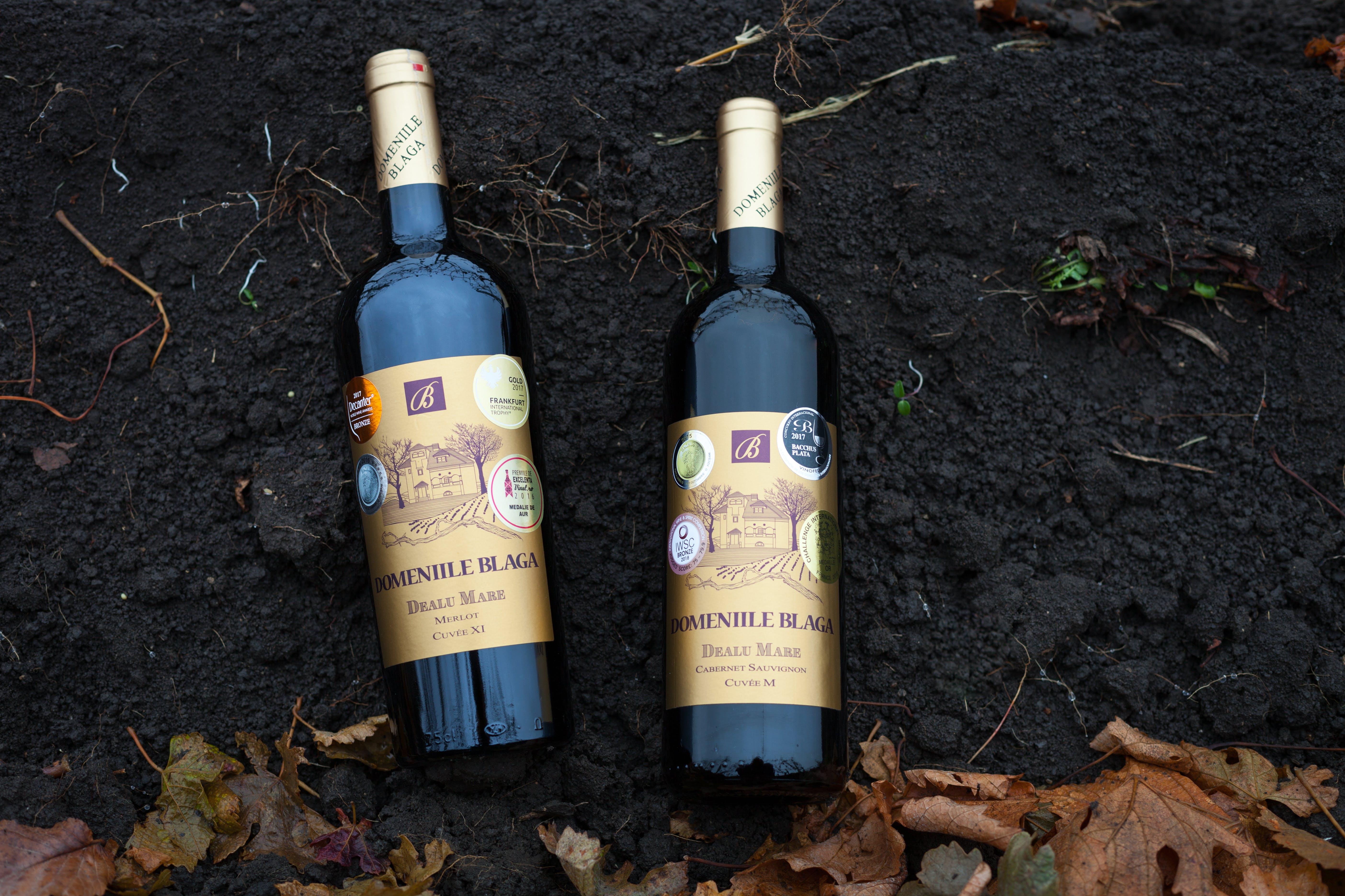 Free stock photo of bottle, Cabernet, dealu mare, domeniile blaga