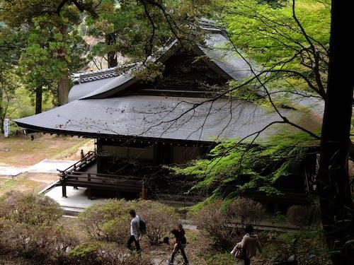 Foto profissional grátis de templo hirokawadera