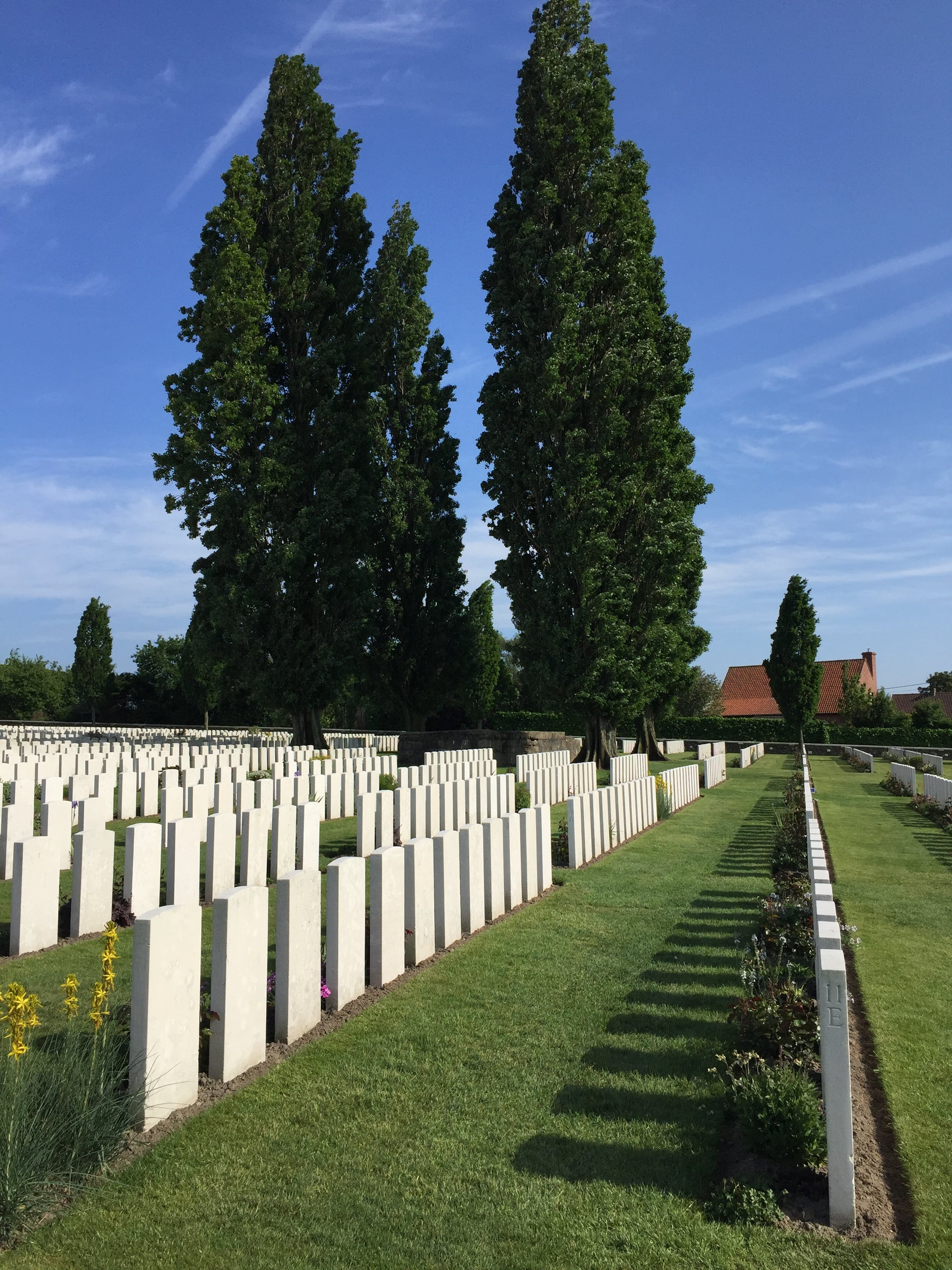 Free stock photo of Belgium, War graves from WW I