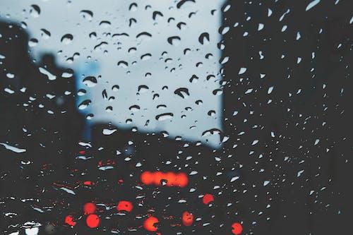คลังภาพถ่ายฟรี ของ กระจก, หยดน้ำ, เปียก, แก้ว