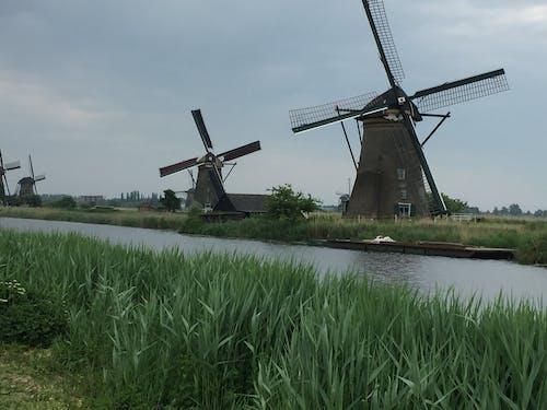 Бесплатное стоковое фото с kinderdyke, ветряные мельницы