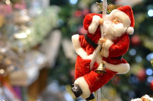 彩色的, 慶祝, 聖誕, 聖誕節背景 的 免費圖庫相片