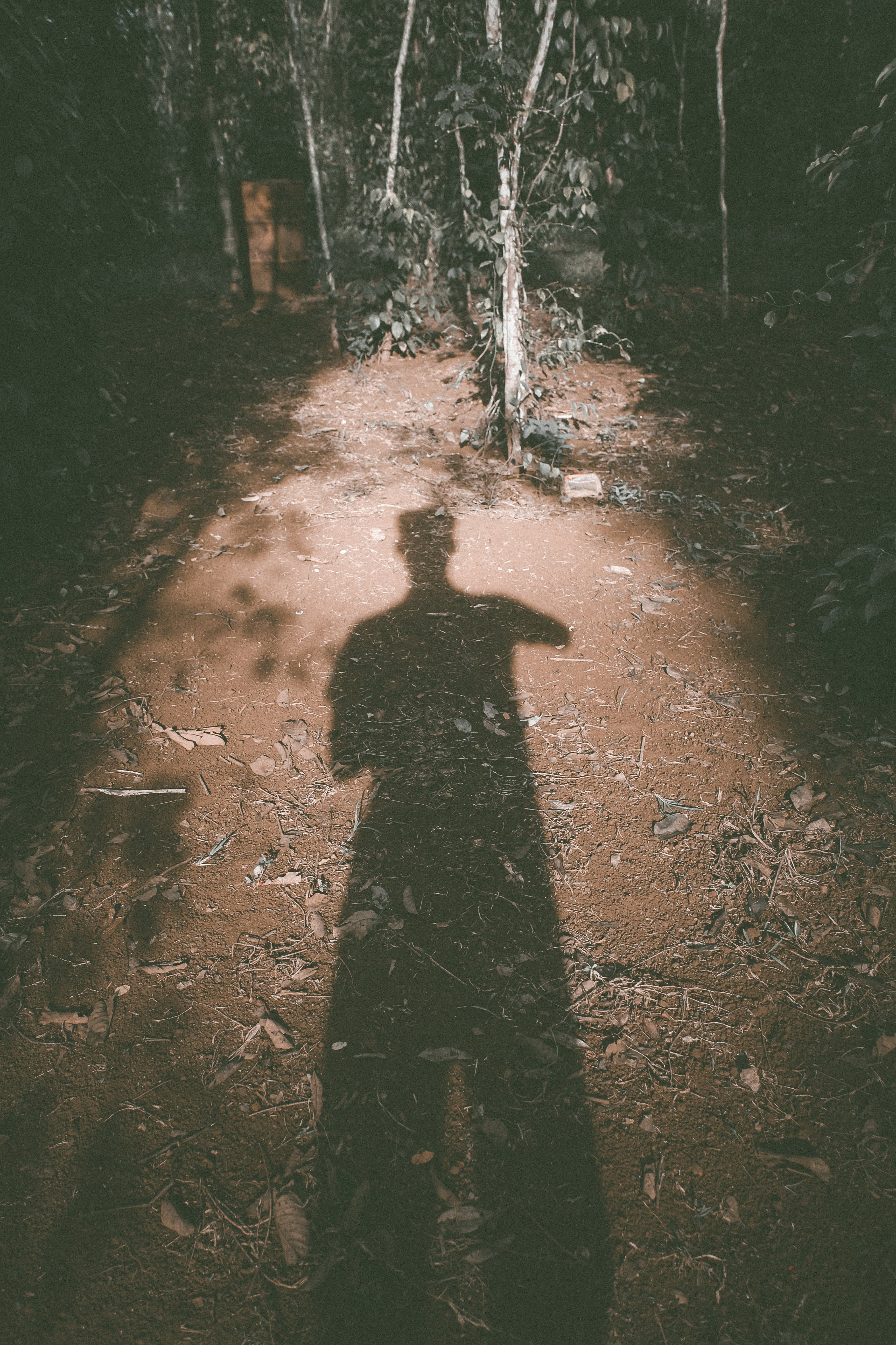 Free stock photo of a person's shadow, evening sun, light and shadow, simple