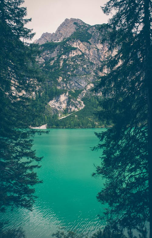 Free stock photo of adventure, alps, calm waters, conifers