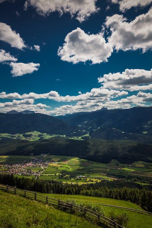 俯視圖, 和平的, 夏天
