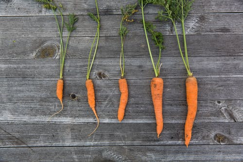 Free stock photo of carrots, food, food photography, fresh