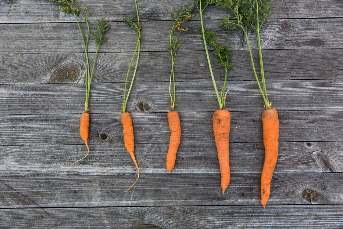 carrots, food, food photography