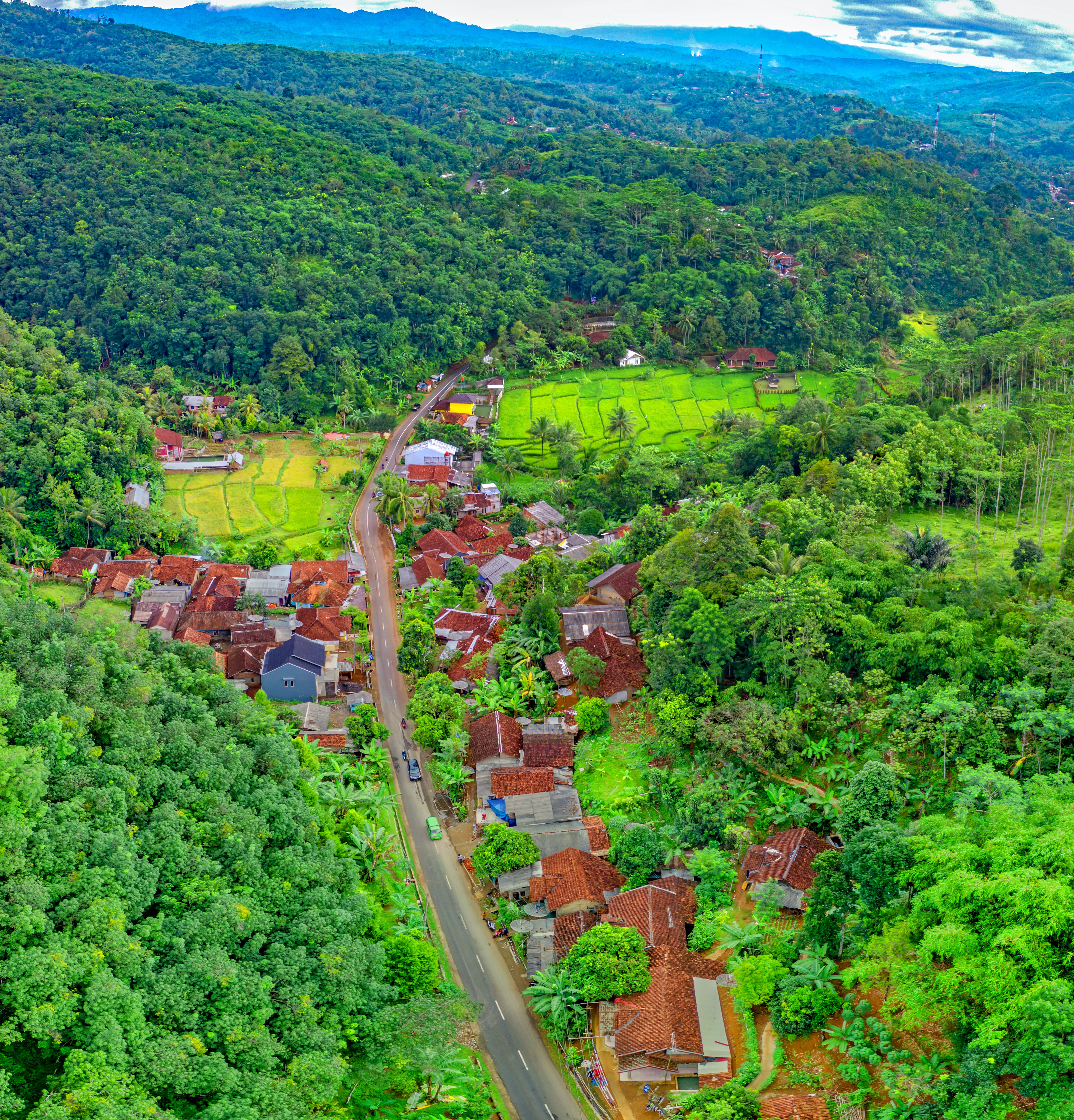 Aerial Photo of Houses Near Road Surrounded by Forest