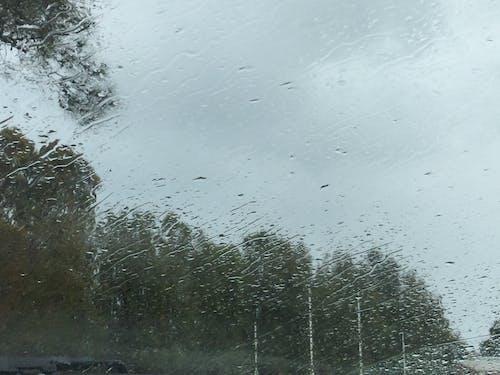 Free stock photo of blur, cold, rain