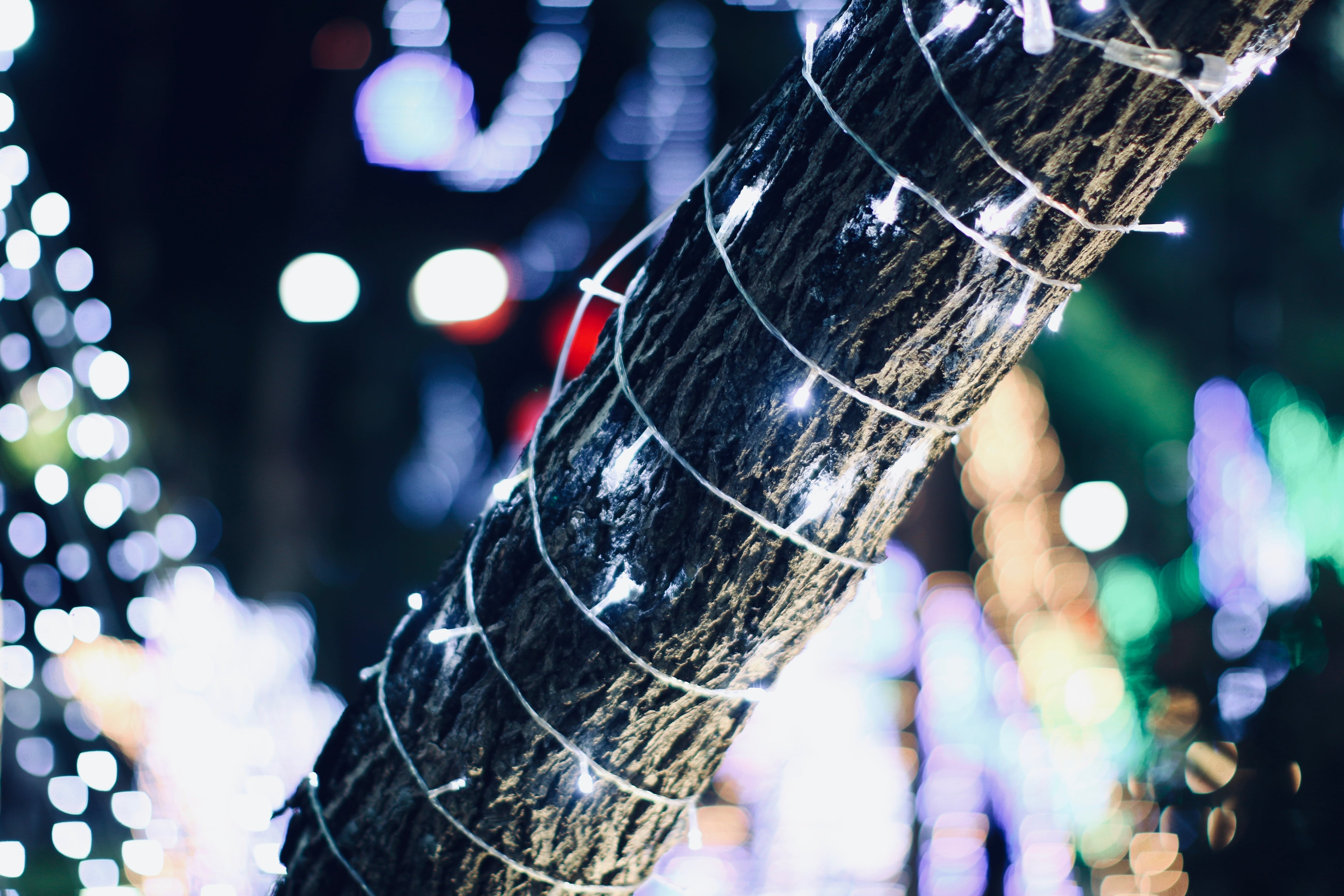 Free stock photo of christmas balls, christmas tree, light effect, light glare