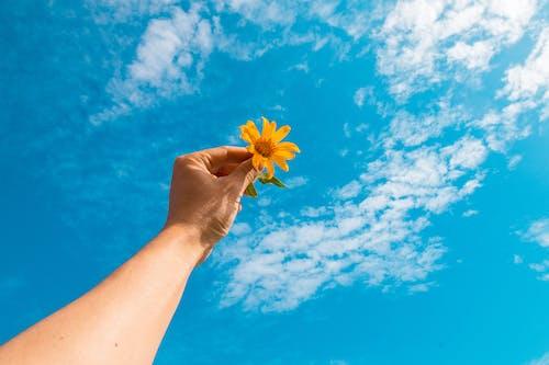Безкоштовне стокове фото на тему «небо, синій, хмара»