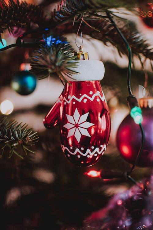 Fotos de stock gratuitas de árbol de Navidad, Bola navideña, colgando, Decoración navideña