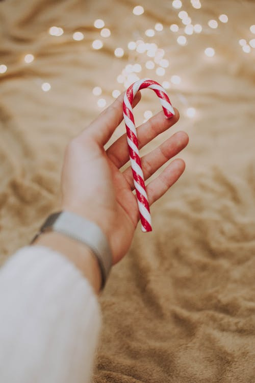 Person Holding Candy Cane