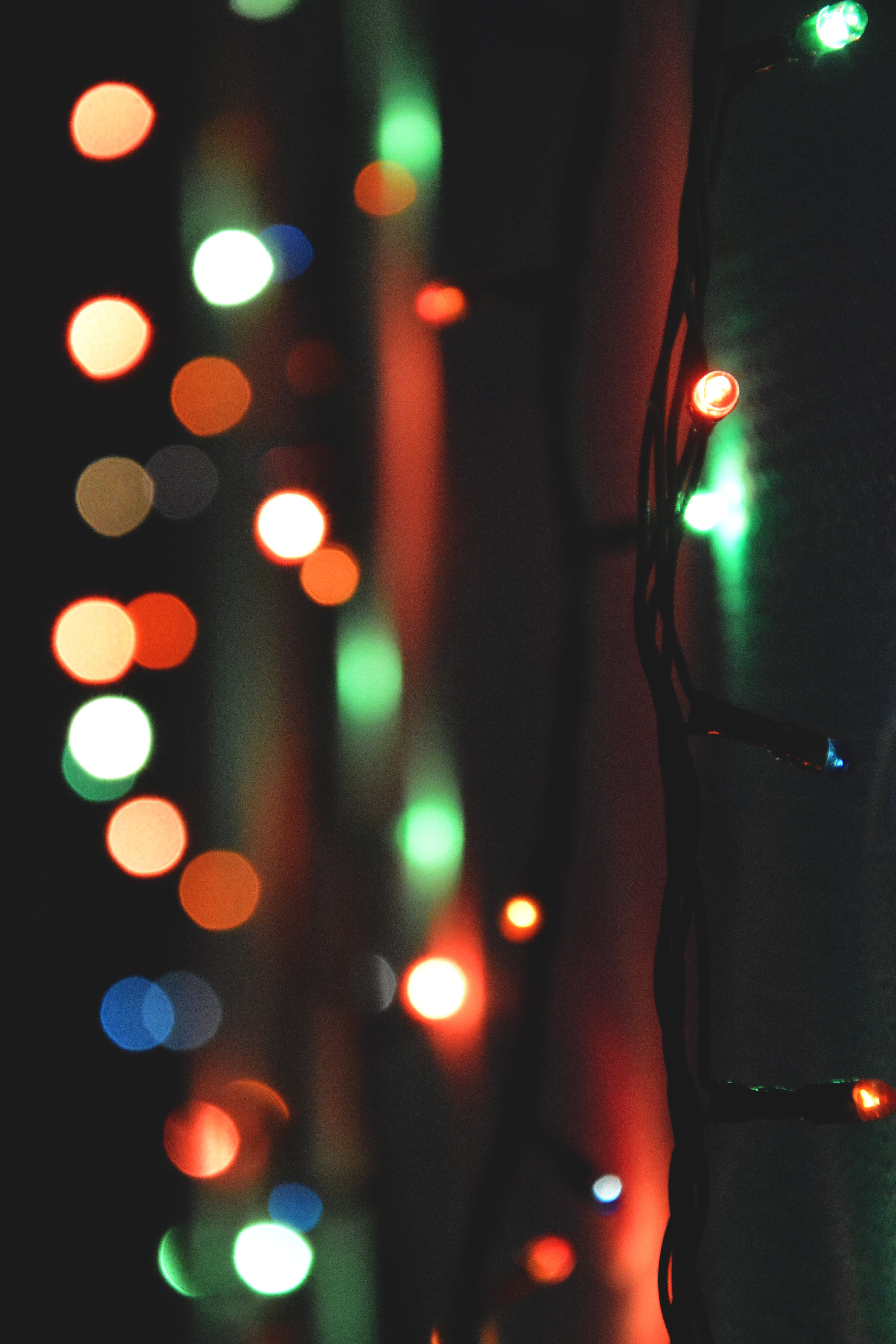Close-Up Photo of Christmas Lights