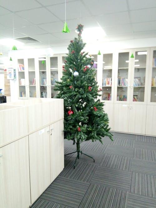 Бесплатное стоковое фото с домашний кабинет, зима, ноэль, рождество