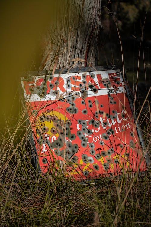 Kostenloses Stock Foto zu einschusslöcher, kreativ, rot, schild