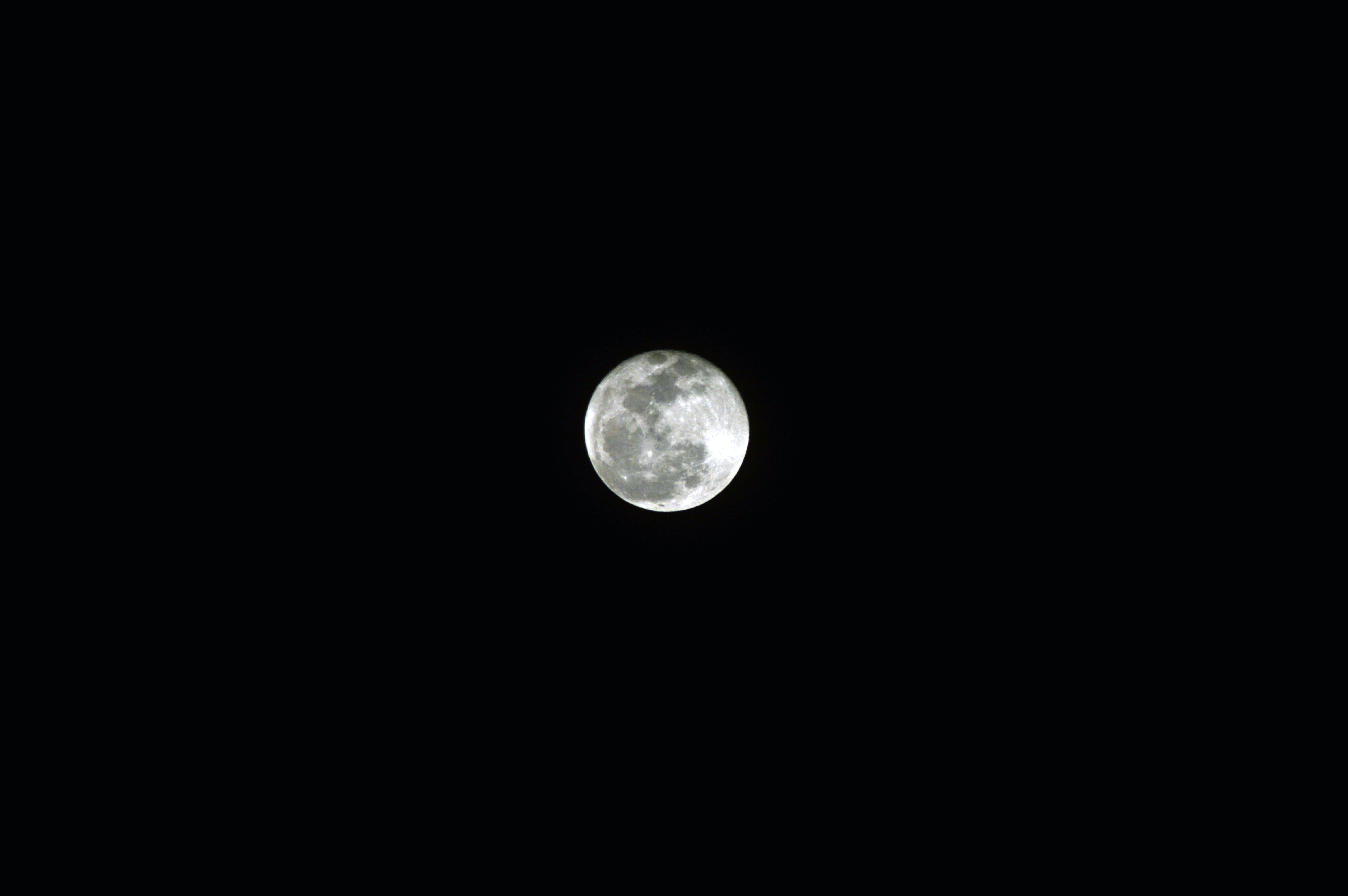Free stock photo of black sky, full moon, moon, moon background