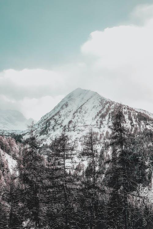 Fotobanka sbezplatnými fotkami na tému hora, krajina, malebný, pokrytý snehom