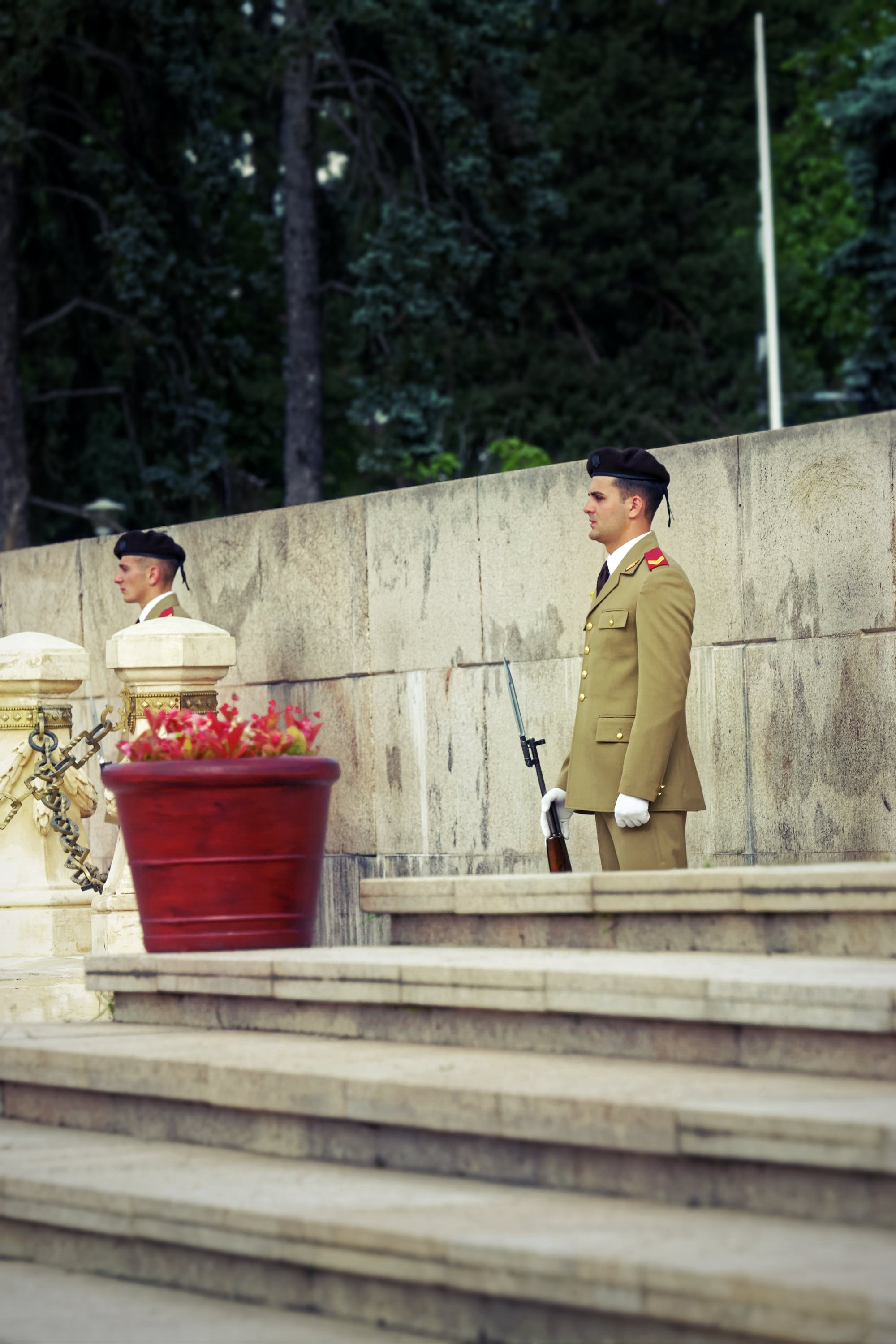 Free stock photo of concrete, flowers, guards in uniformes, guns