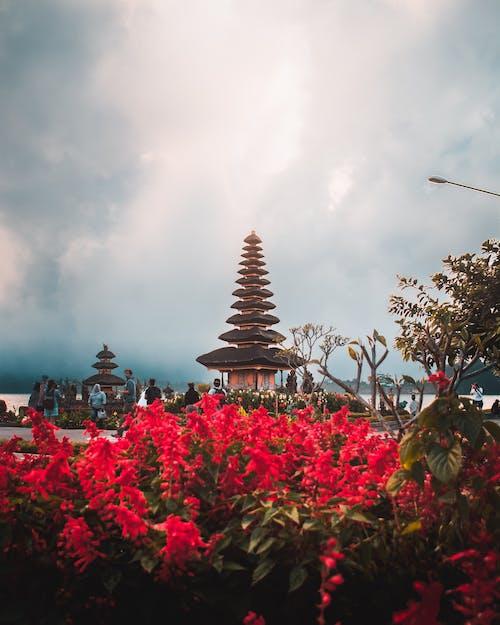 Imagine de stoc gratuită din Bali, bedugul, clar, hindus
