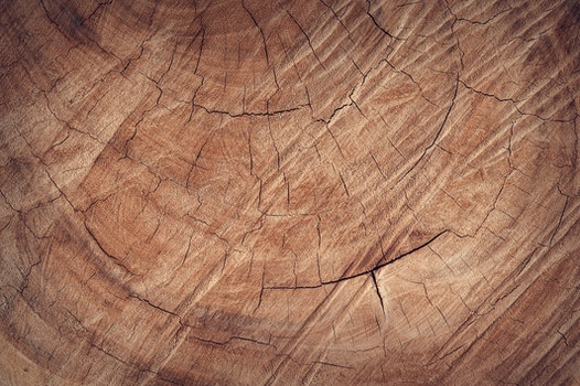 Free stock photo of wood, pattern, brown, wooden