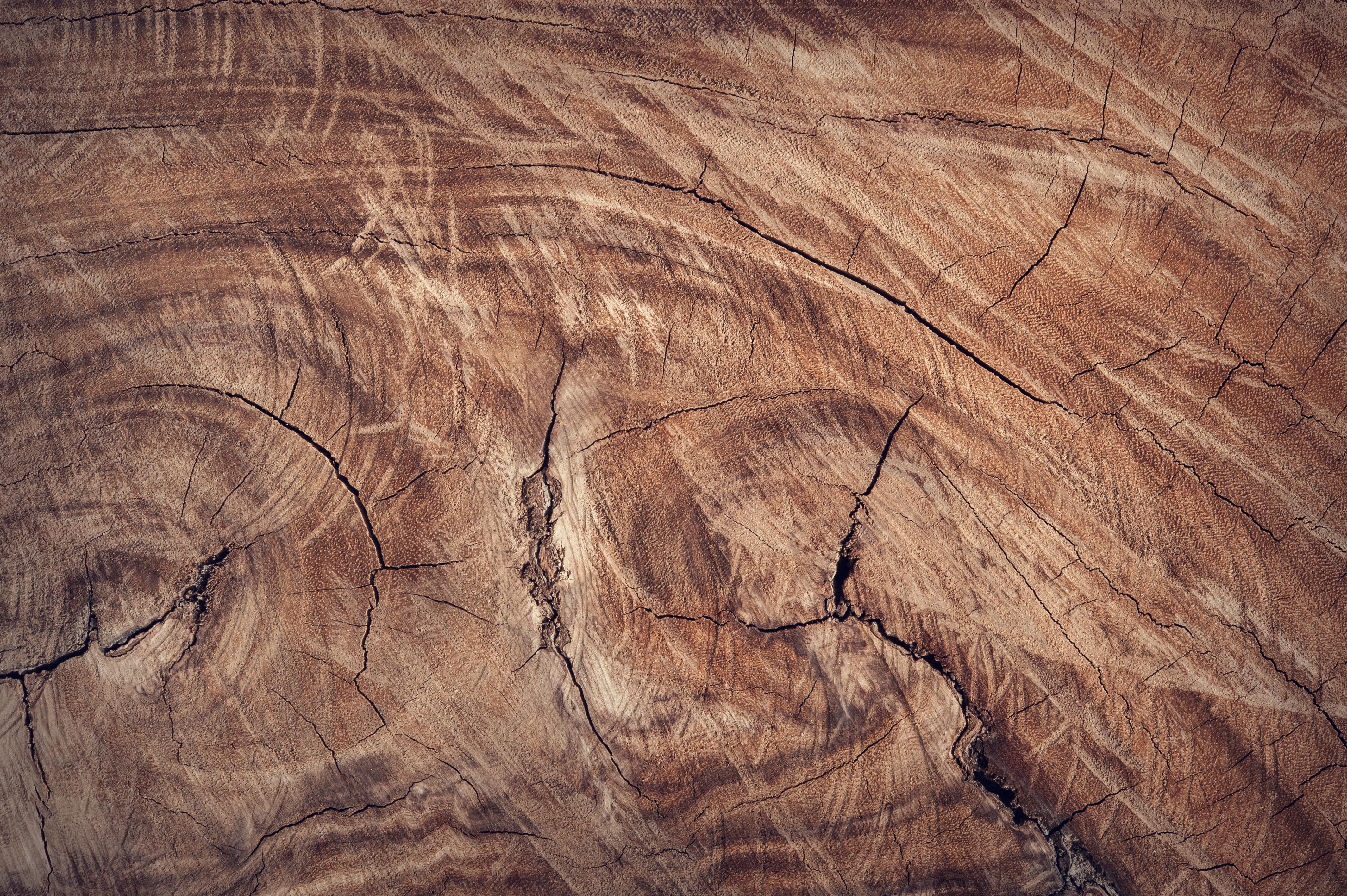 wood background free