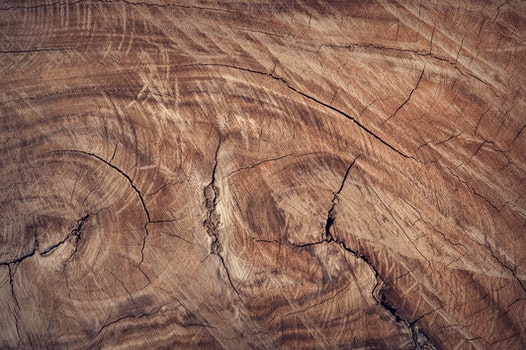 Free stock photo of wood, texture, brown, surface