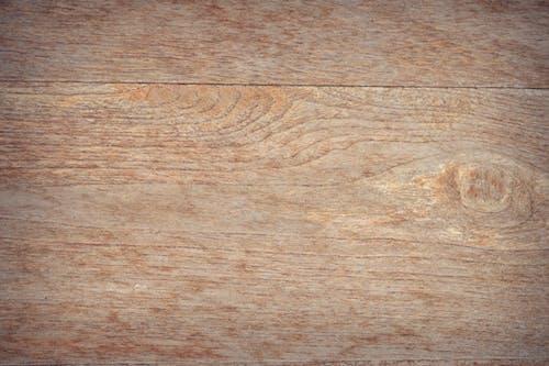 Fotobanka sbezplatnými fotkami na tému drevený, hnedá, les, panel