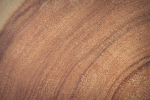 Free stock photo of wood, nature, red, dark