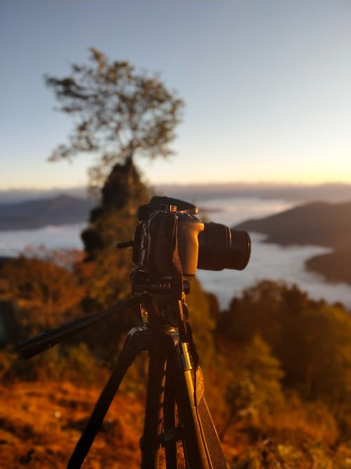 Selective Focus Photography of Dslr Camera on Stand