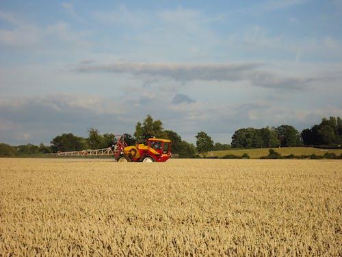 Darmowe zdjęcie z galerii z pole kukurydzy, sprzęt rolniczy