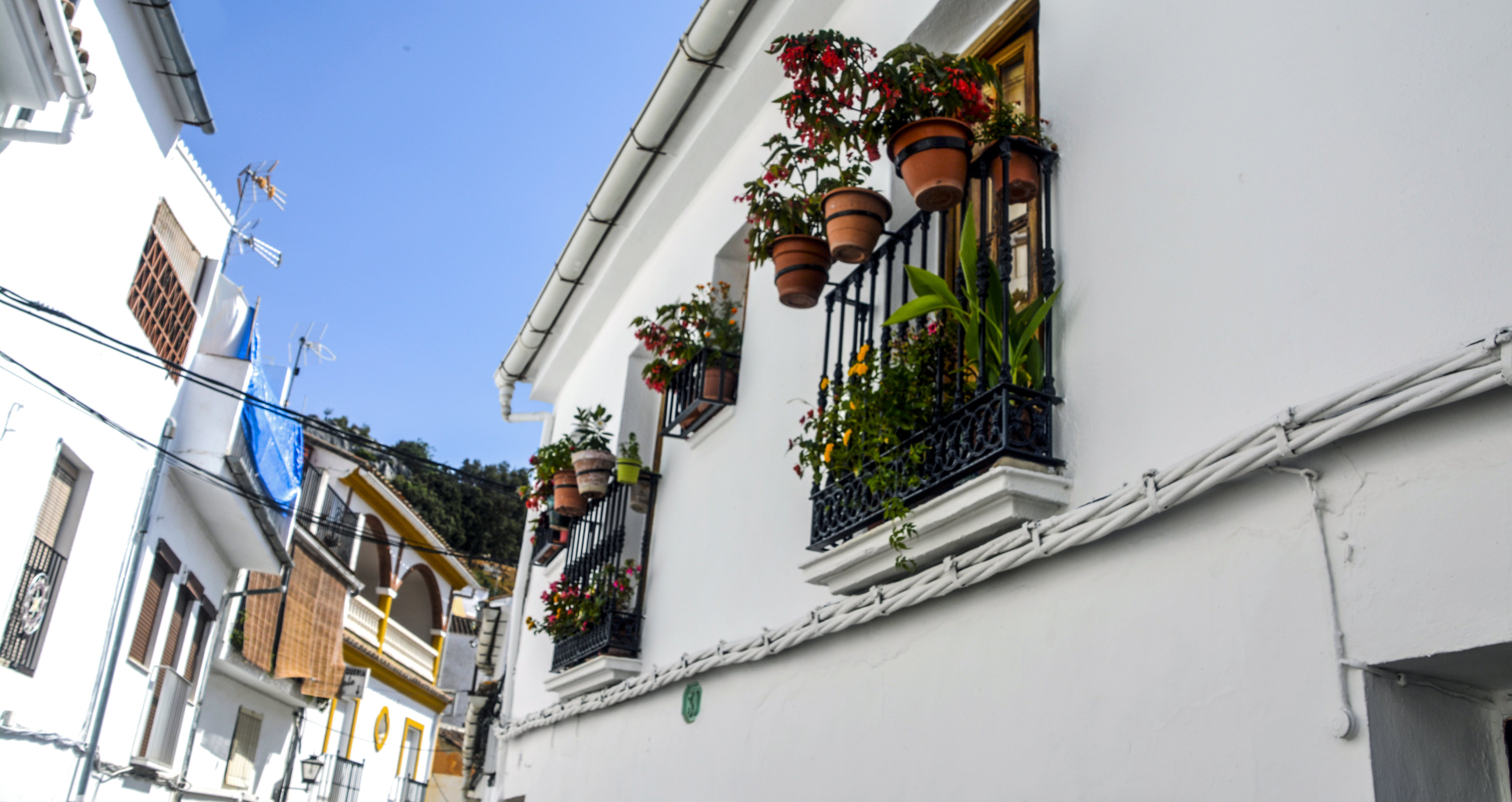 Free stock photo of Blueskye, flowers, spain, white village