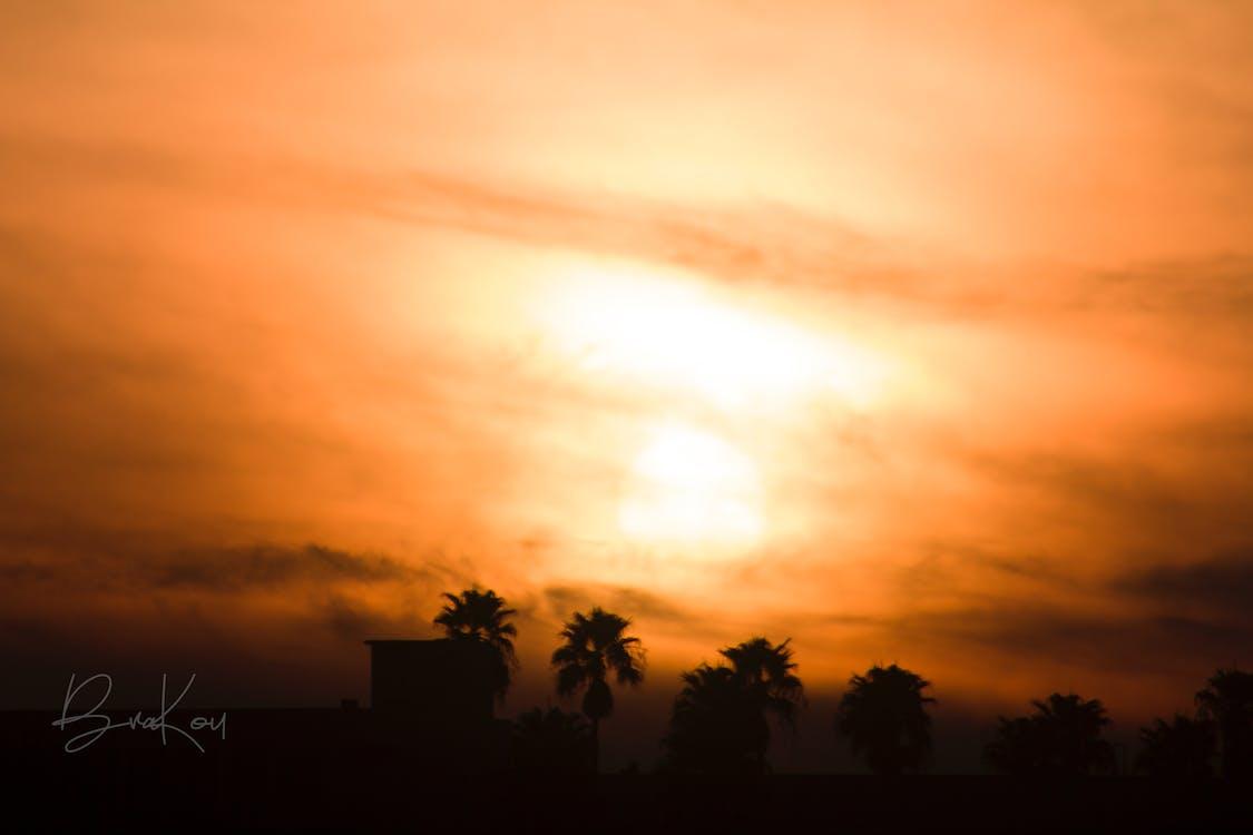 傍晚的天空, 傍晚的太陽, 多雲的天空