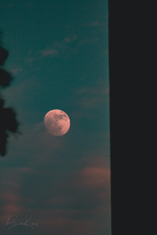 Free stock photo of blood moon, blue, crescent moon, evening