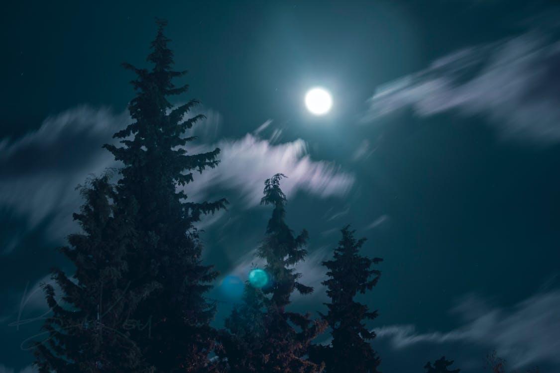 blå himmel, lang eksponering, måne